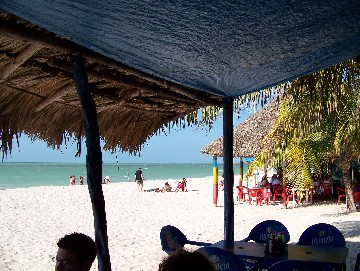 Excellent Sea food restaurants right on the beach!!